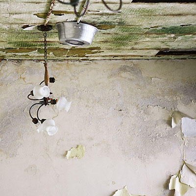 A moldy lighting fixture in an abandoned building.